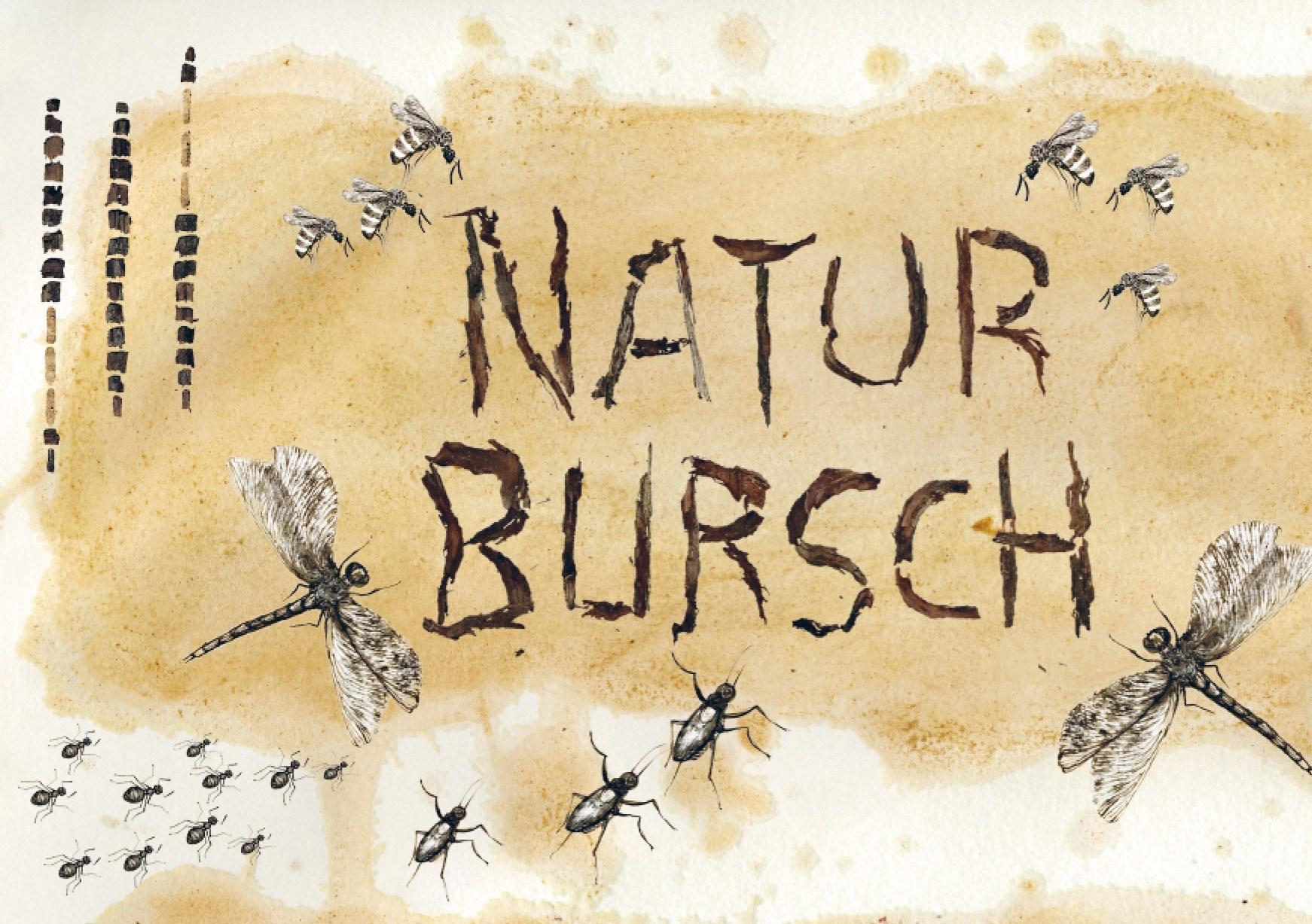 Naturbursch - Bio-Weißweincuvée